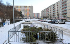 Parc-a-Sapin-2.jpg